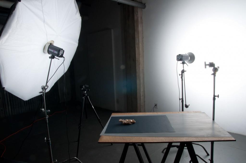 ginger_roots_lighting_setup